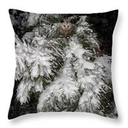 Opossum In The Pines Throw Pillow