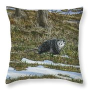 Opossum  Throw Pillow