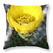 Opuntia Ficus-indica Flower Of The Prickly Pear Throw Pillow