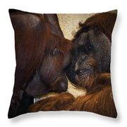 Orangatang Love Throw Pillow