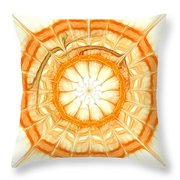 Orange Throw Pillow by Anastasiya Malakhova