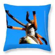 Orange And Black Spider Legs Throw Pillow