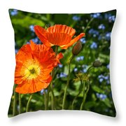 Orange And Blue - Beautiful Spring Orange Poppy Flowers In Bloom. Throw Pillow