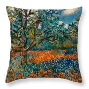 Orange And Blue Flower Field Throw Pillow