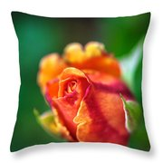 Orange And Fuschia Rosebud Throw Pillow