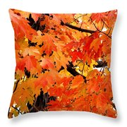 Orange And Reds And Some Yellow Too Throw Pillow