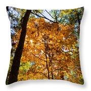Orange Autumn II Throw Pillow