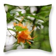 Orange Azalea Delight Throw Pillow