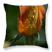 Orange Bud Throw Pillow