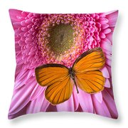 Orange Butterfly On Pink Daisy Throw Pillow