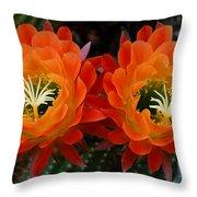 Orange Cactus Flowers Throw Pillow