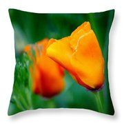 Orange California Poppies Throw Pillow