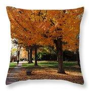 Orange Canopy - Davidson College Throw Pillow