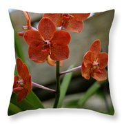 Orange Colored Orchid Throw Pillow