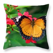Orange Common Lacewing Butterfly Throw Pillow