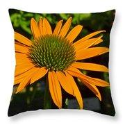 Orange Cone Flower Throw Pillow