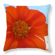 Orange Cosmo And Sky Throw Pillow
