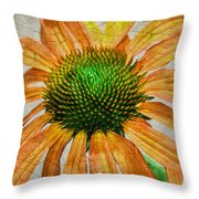 Orange Crackle Throw Pillow