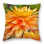 Orange Cream Dahlia Throw Pillow