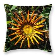 Orange Curl Throw Pillow