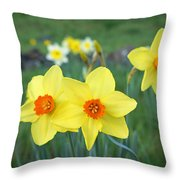 Orange Daffodils Flowers Spring Garden Throw Pillow