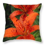 Orange Day Lilies Throw Pillow