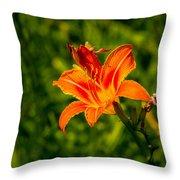 Orange Daylily Flower 4 Throw Pillow