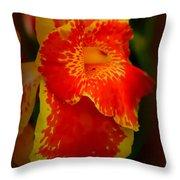Orange Delight Throw Pillow by Debra Forand
