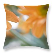 Orange Design. Paintrly Chrysanthemum  Throw Pillow