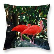 Orange Feathered Friends Throw Pillow