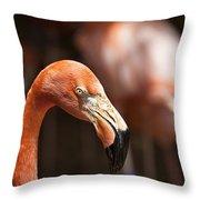 Orange Flamingo Throw Pillow
