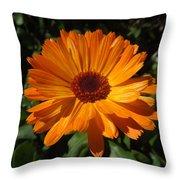 Orange Flower In The Garden Throw Pillow