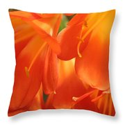 Orange Flower Petals Throw Pillow