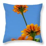 Orange Flowers On Blue Sky Throw Pillow