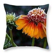 Orange Frosty Throw Pillow