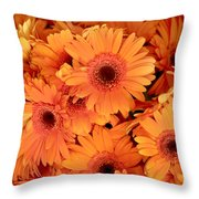 Orange Gerbera Daisies Throw Pillow