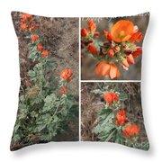 Orange Globe Mallow Collage Throw Pillow