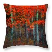 Orange Glory Throw Pillow