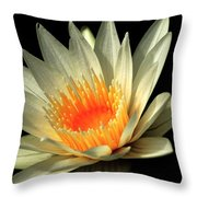 Orange Glow   # Throw Pillow