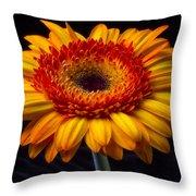 Orange Graphic Mum Throw Pillow