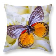 Orange Gray Butterfly Throw Pillow