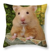 Orange Hamster Ha106 Throw Pillow