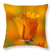 Orange Harmony Throw Pillow