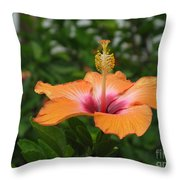 Orange Hibiscus Blossom Throw Pillow