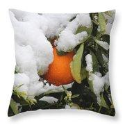 Orange In Snow Throw Pillow