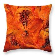 Orange Is In Throw Pillow
