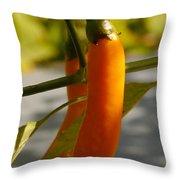Orange Jalapeno Pepper  Throw Pillow