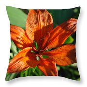 Orange Lilly Throw Pillow