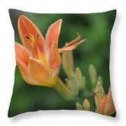 Orange Lily Photo 2 Throw Pillow