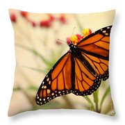 Orange Mariposa Throw Pillow